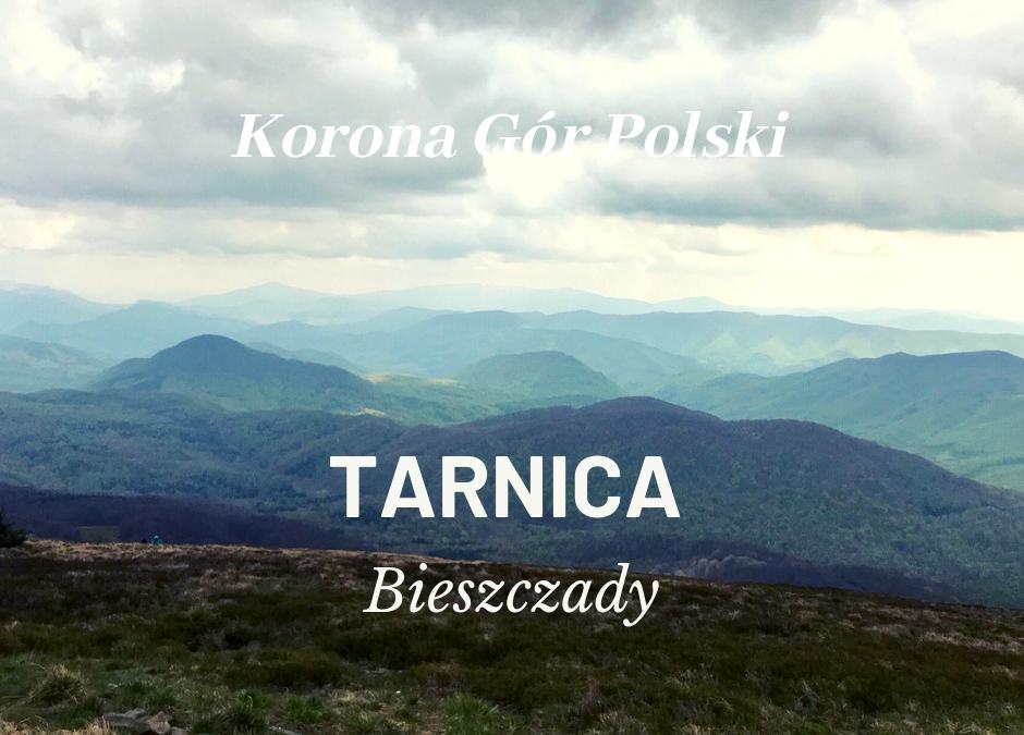 Tarnica | Bieszczady | KORONA GÓR POLSKI