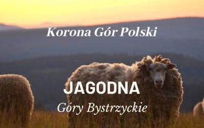 Jagodna   Góry Bystrzyckie   KORONA GÓR POLSKI